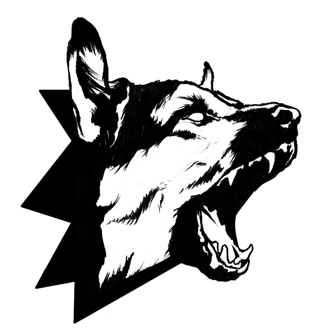 Dog Section 's account image