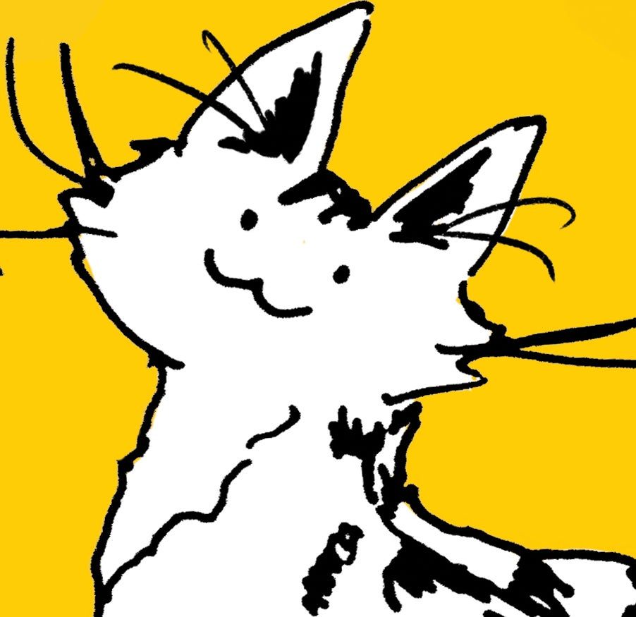 Kitten Rain's account image