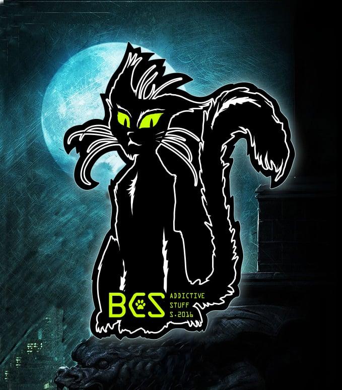 Studio Black Cat