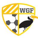 We Global Football's account image