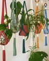 Rope Plant Hangers