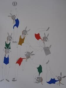 image de Grapsa âne circus