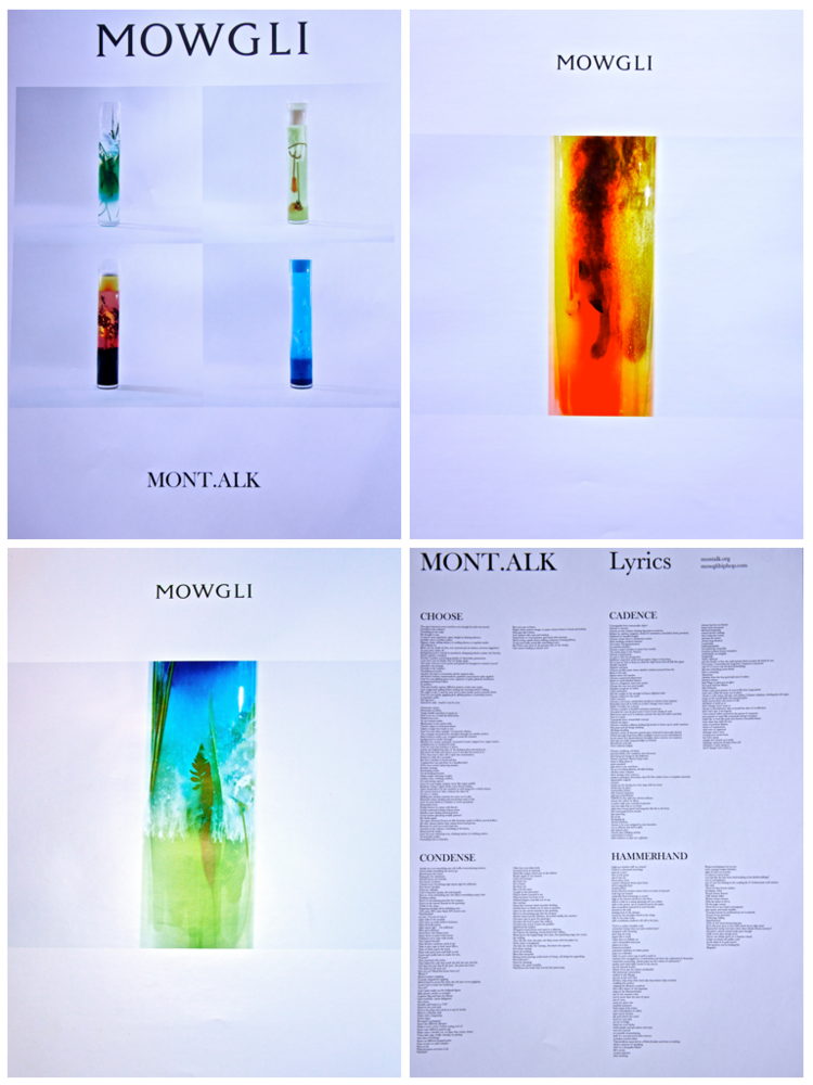 Image of Limited Edition Mont.alk Printwork