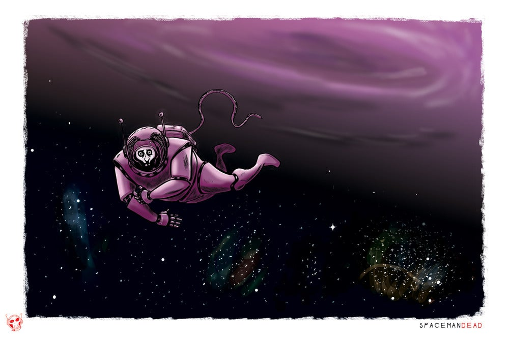 Image of SPACEMAN PURPLE