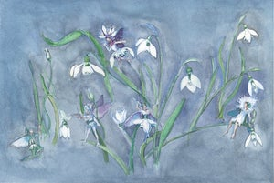 Image of Snowdrop Flower Fairies Print
