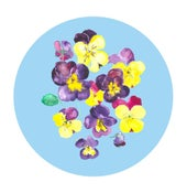 Pansies Circle print