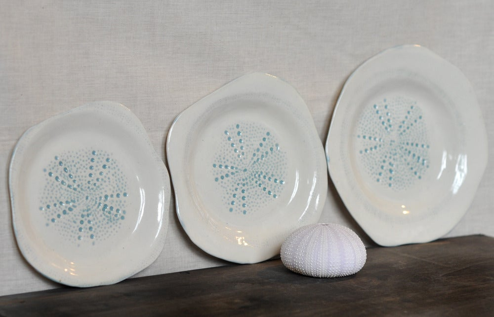 Image of sea urchin nesting plates #1