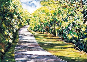 Image of Road to Maracas - Canvass Print