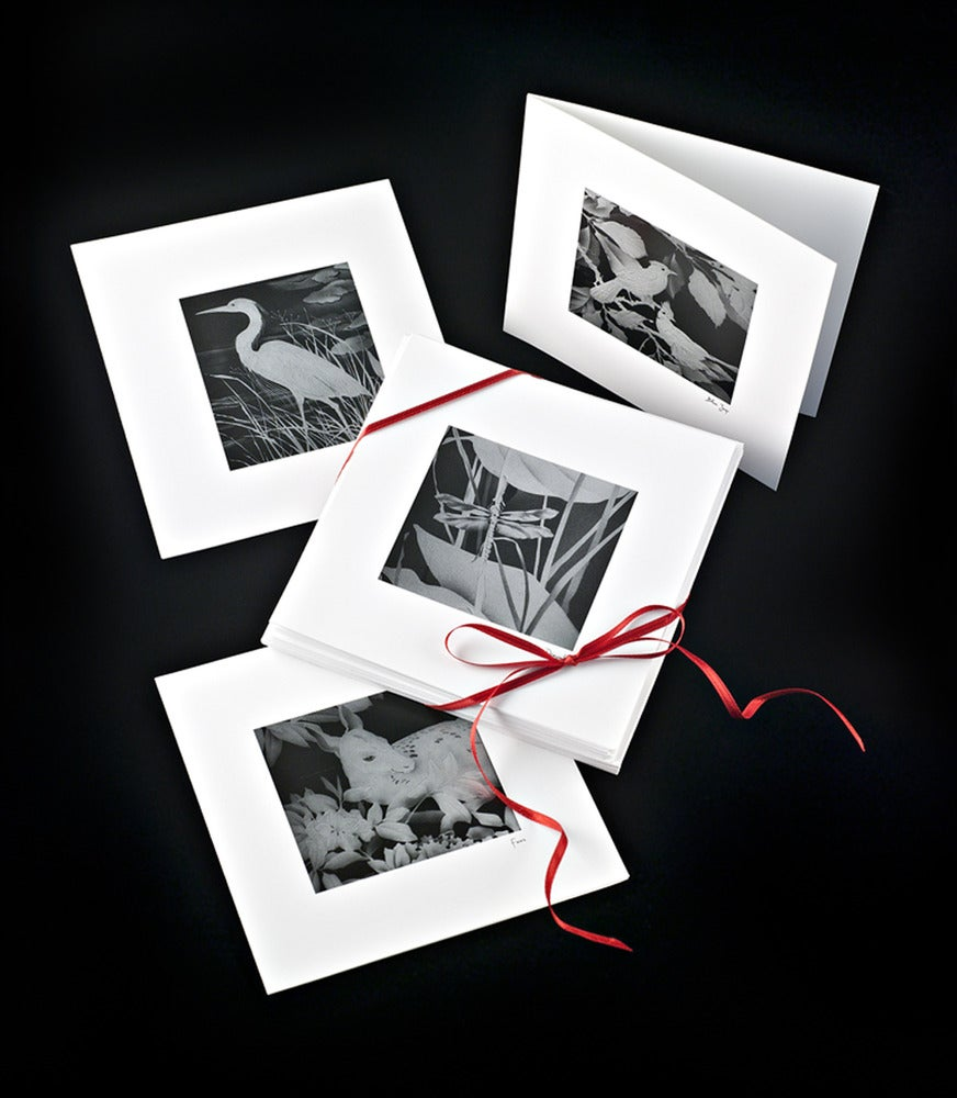Image of Black and White Note Cards