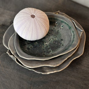 Image of sea urchin nesting plates #3