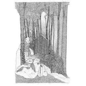 Image of In the Dark