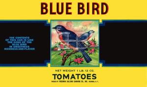 Image of Blue Bird Tomatoes