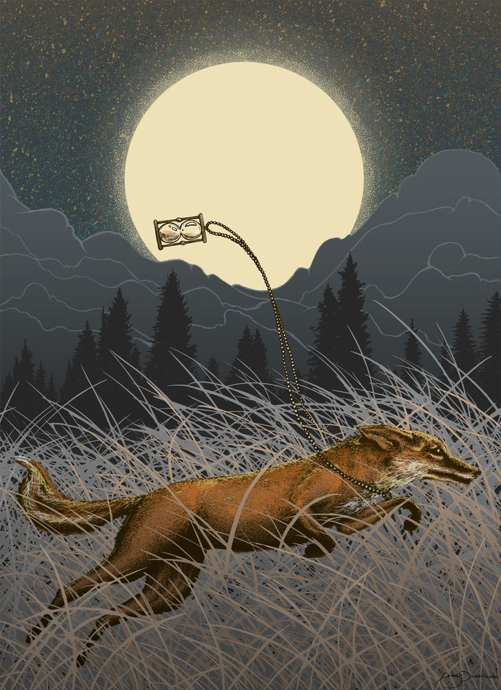 Image of Fox Fight Fox Flight