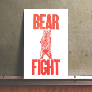 Image of Bear Fight