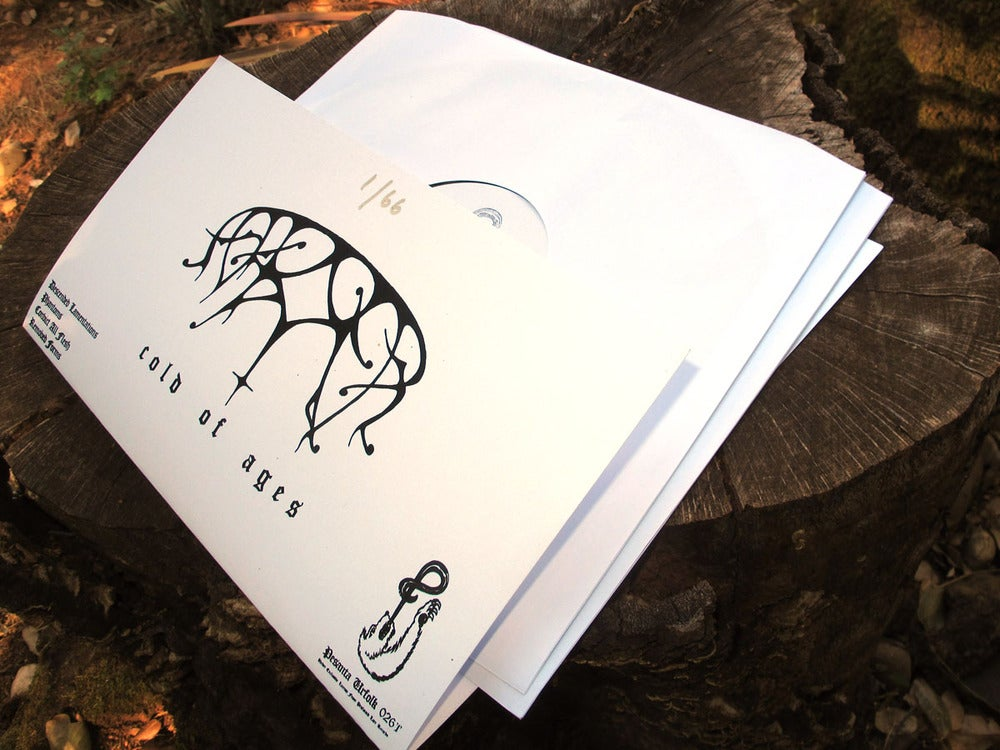 Image of Ash Borer - Cold of Ages, DoLP test pressings