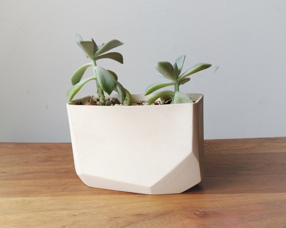 Image of crystal planter