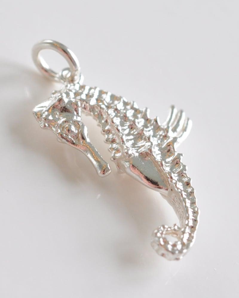 Image of Seahorse - Shiny