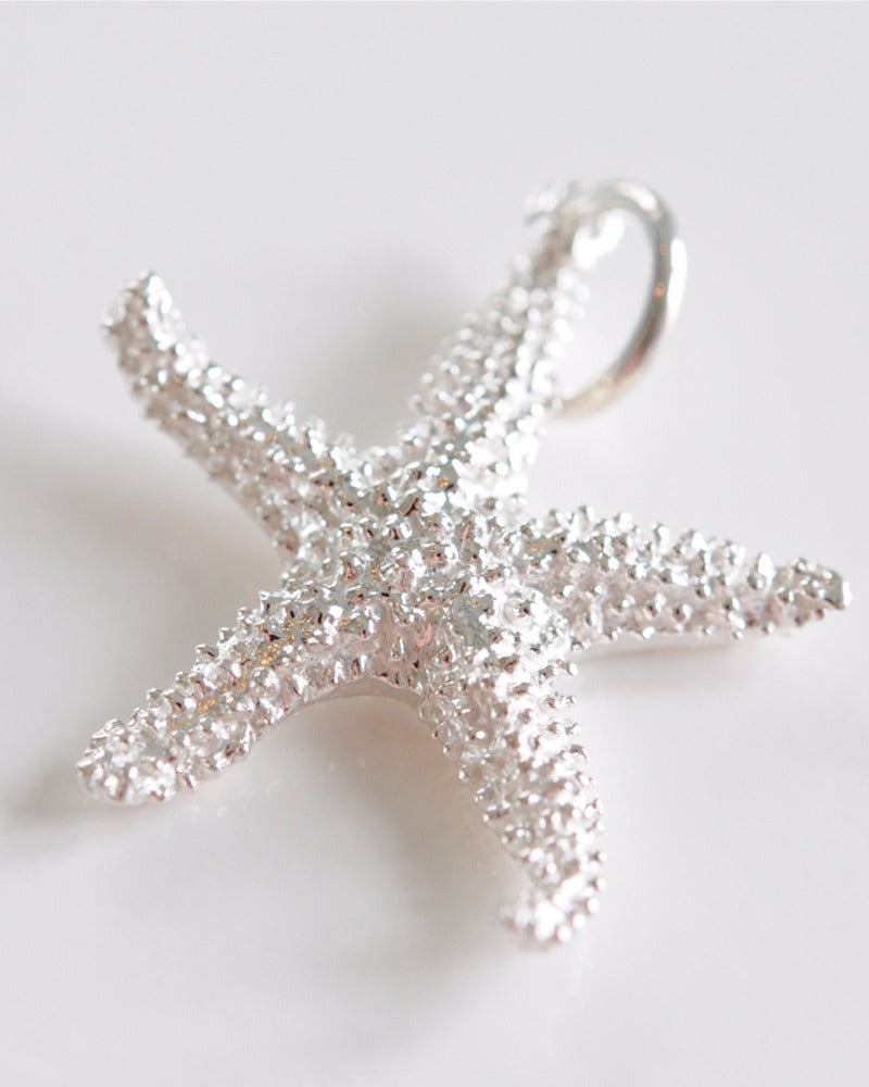 Image of Starfish - Shiny