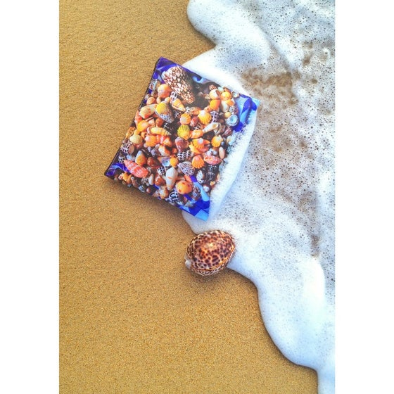 Image of Seashells Zipper Clutch