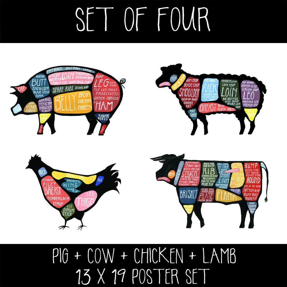 Image of Set of FOUR - Cow, Pig, Chicken and Lamb Butchery Diagram Prints