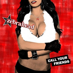 Image of 'Call Your Friends' CD