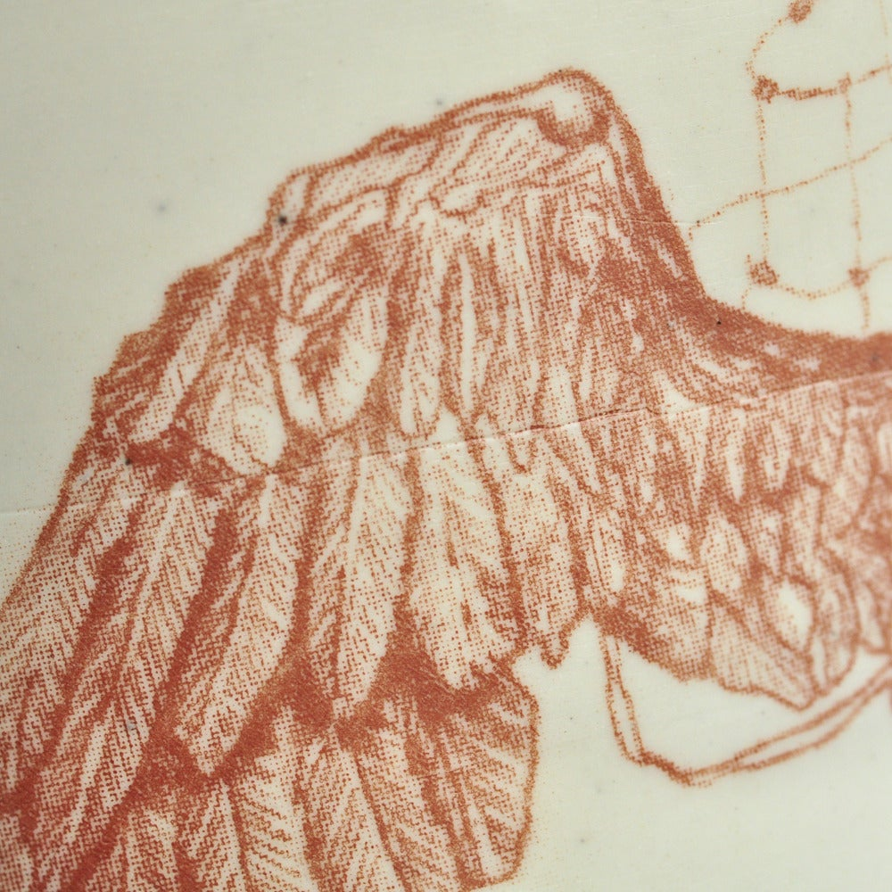 Image of winged