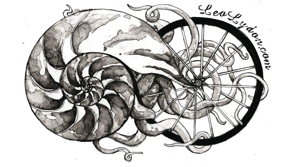 "Image of 4""x6"" Nautilus/Bike Spoke Sticker"