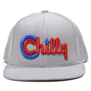 Image of CHILLY SILVER SNAPBACK