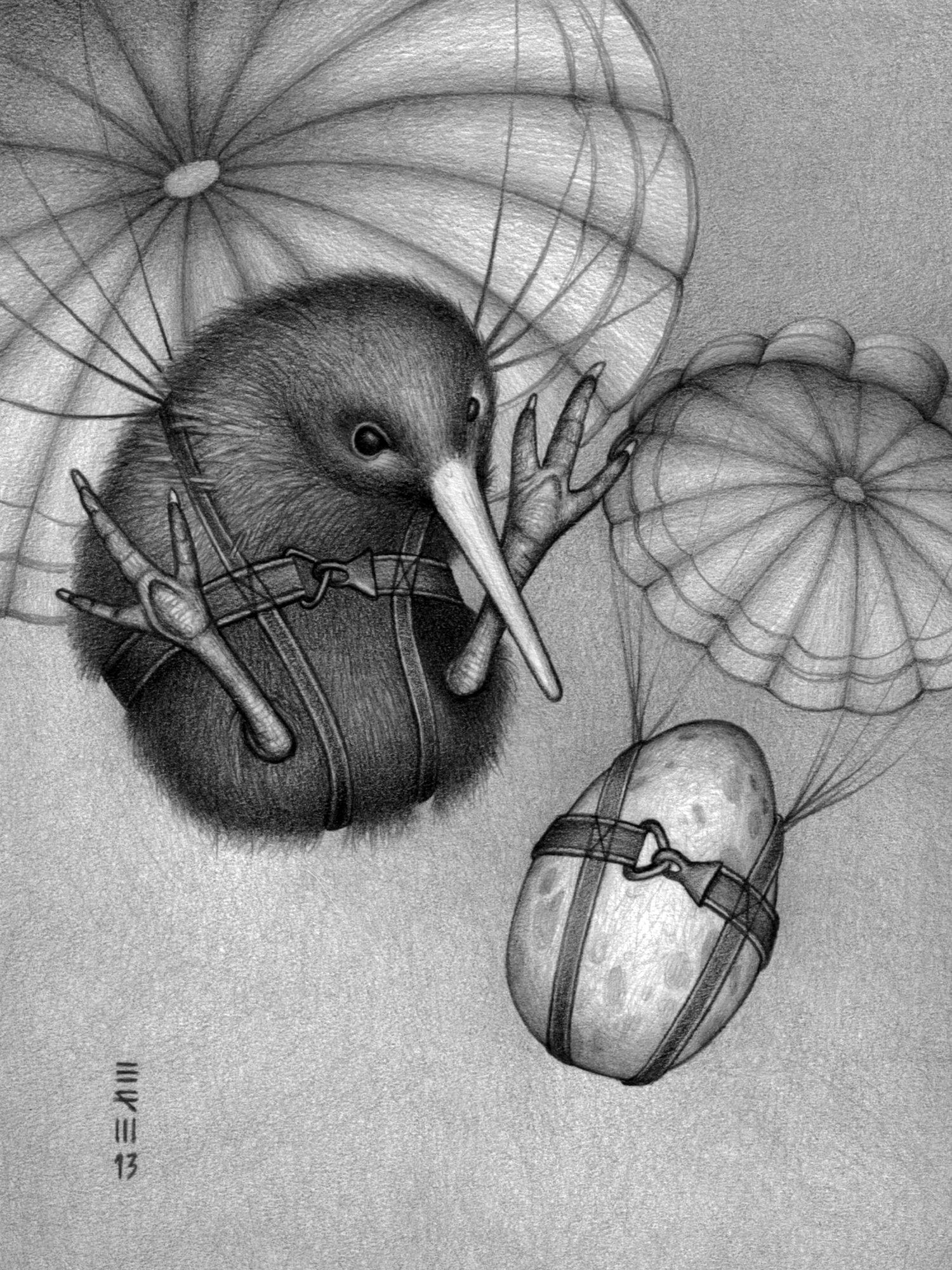 Image of Kiwi/Parachute