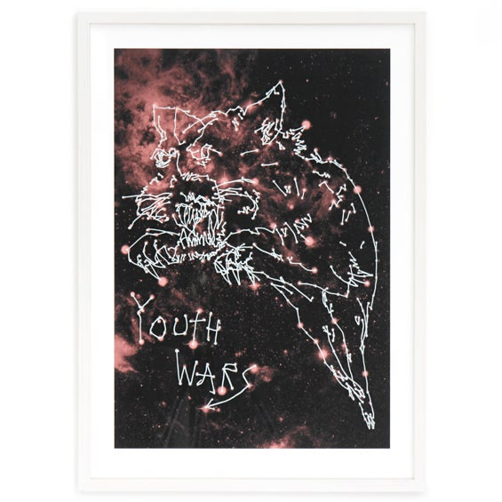 Image of YOUTH WARS / Wayne Horse