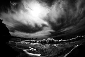 Image of The Tide- Shi Shi Beach, WA