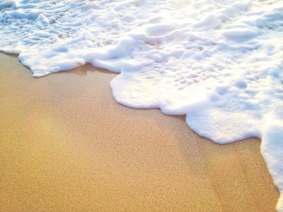 Image of Sea Foam Zipper Clutch