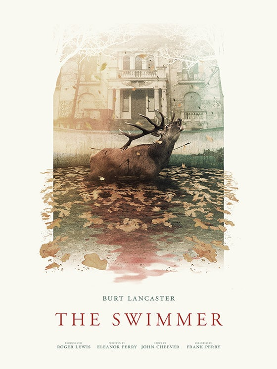 Image of The Swimmer