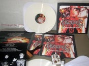 "Image of DISGORGE ""Chronic Corpora Infest"" 12 LP - SOLD OUT"