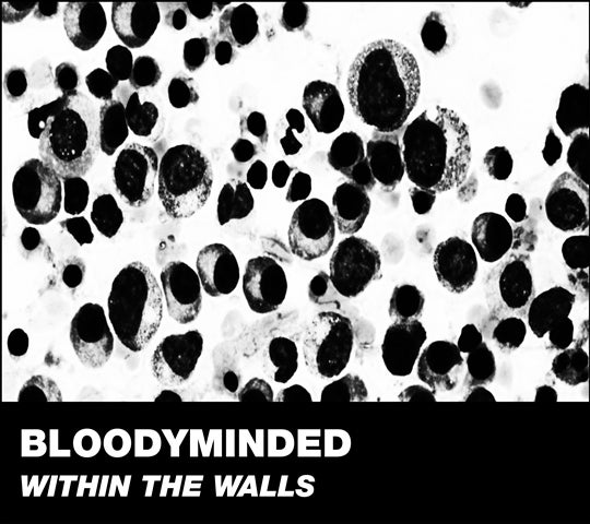 "Image of B!176 BLOODYMINDED ""Within The Walls"" CD"