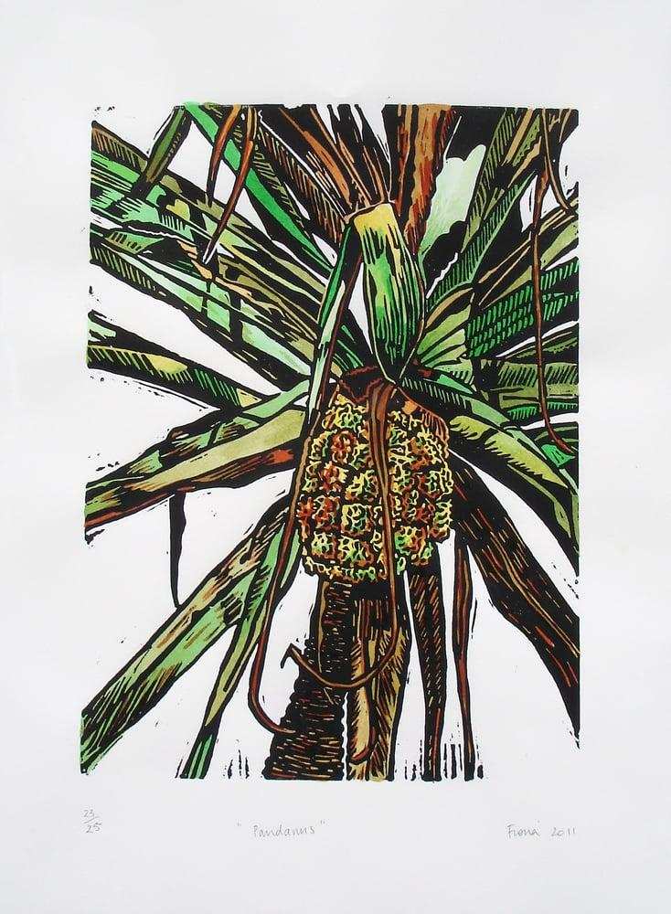 Image of Pandanus- Handcoloured