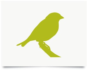 Image of Greenfinch print