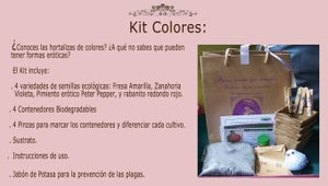 Image of Kit Colores