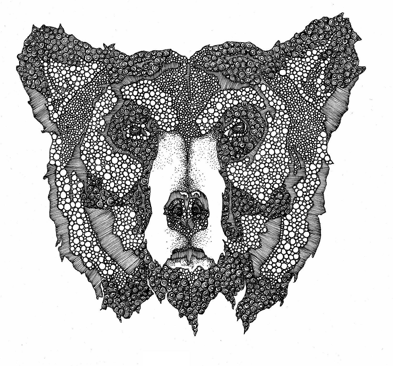 Image of Bear Necessities