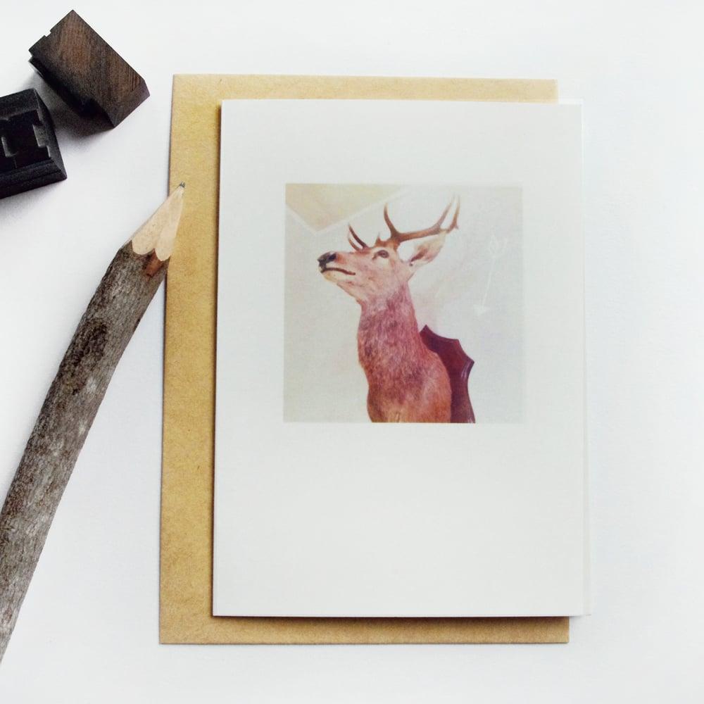 Image of Carte et enveloppe/ Trophée de cerf