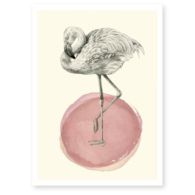 Image of Affiche A4 Flamant rose 2