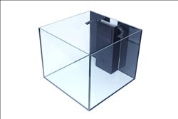 Image of 50 Gallon Starfire Rimless cube