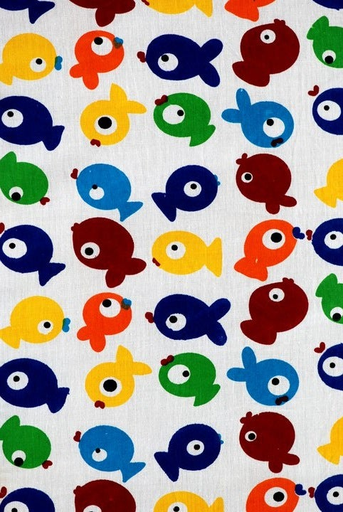 Image of COVER- RAINBOW FISH
