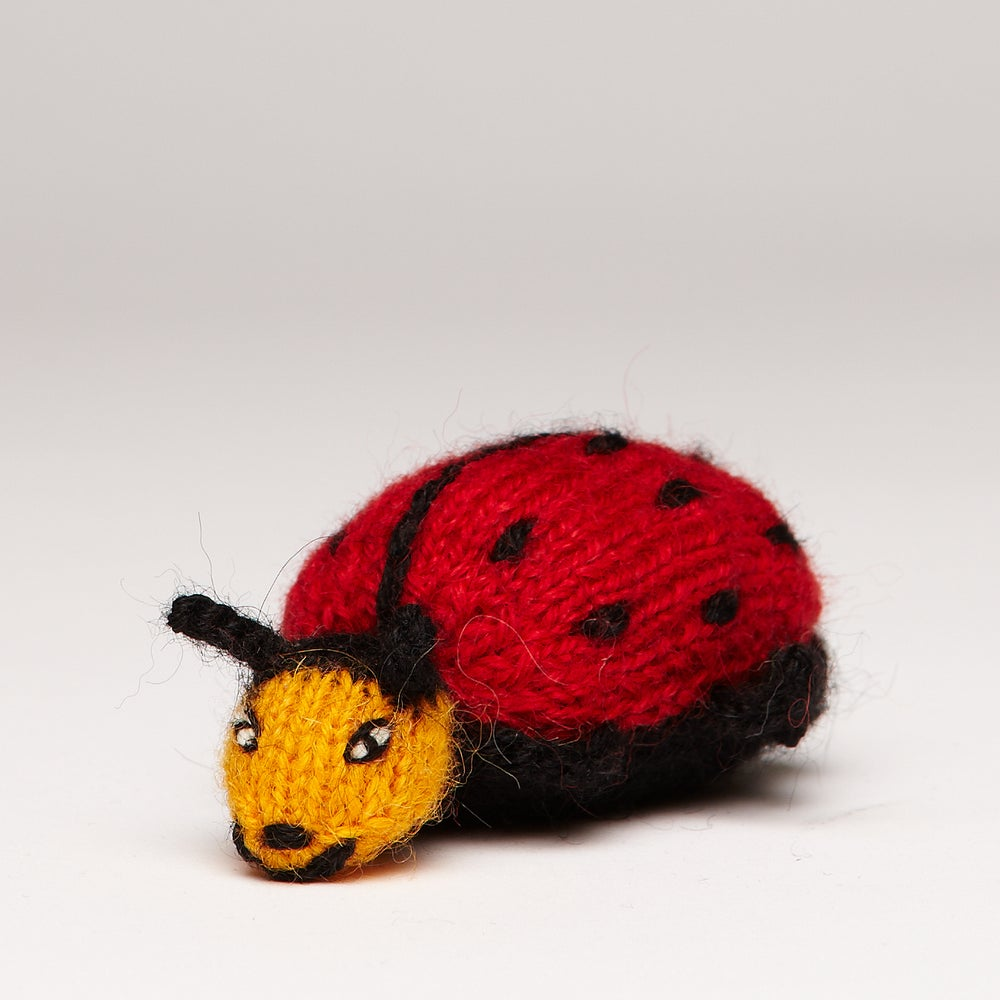 Image of Finger Puppet Ladybird