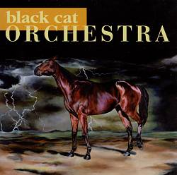 Image of Black Cat Orchestra (CD)