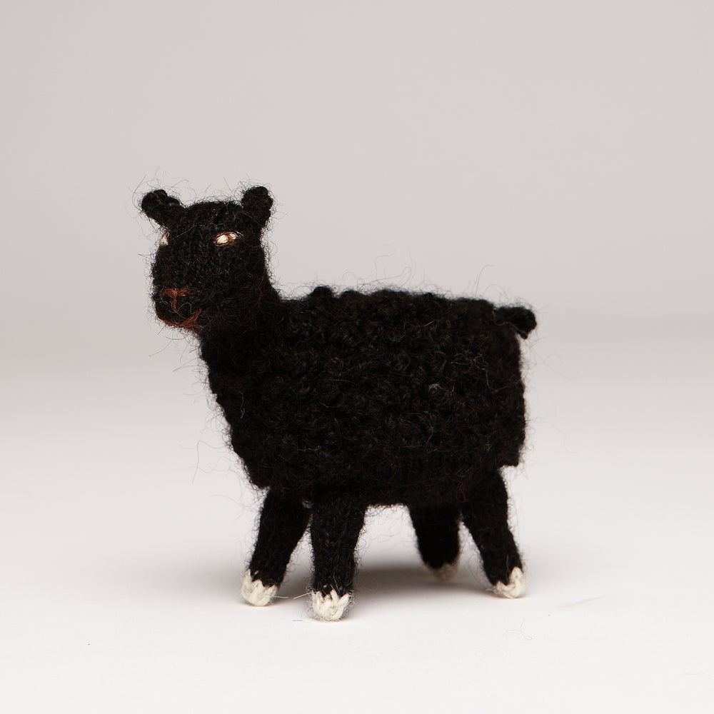 Image of Finger Puppet  Sheep
