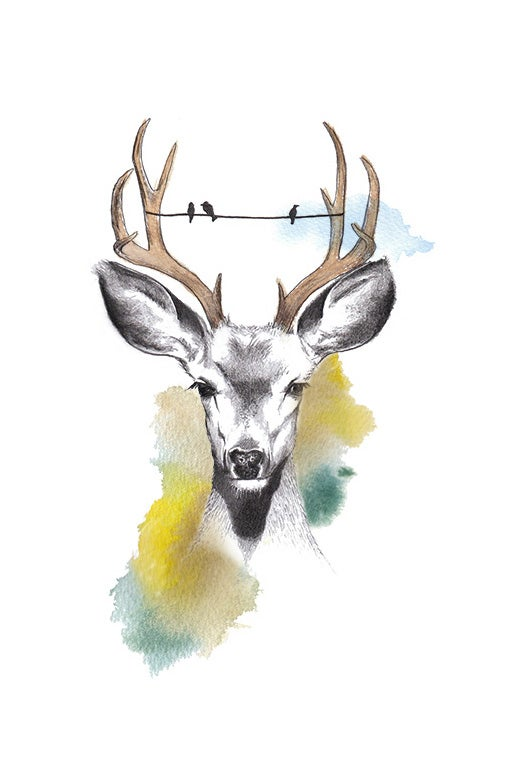 Image of Oh Deer - Limited Edition - A3 Print