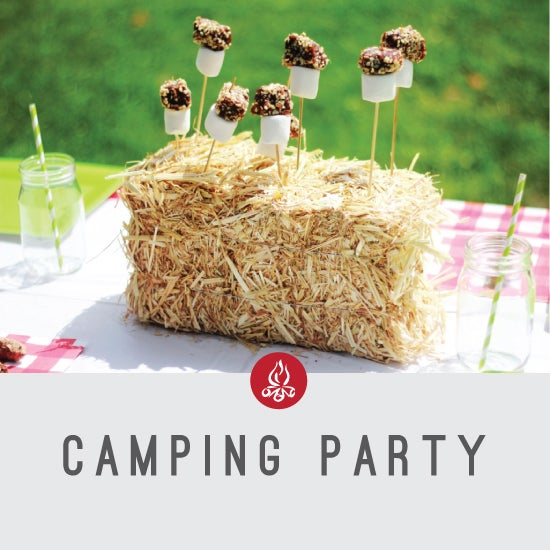 Image of Camping Party
