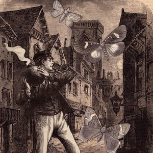 Image of Winston Smith: Butterfly Bomber Print