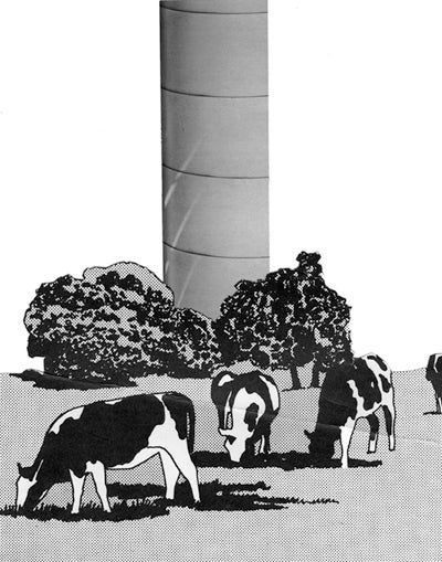 Image of Cows with Pipe